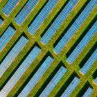 Recanto da Natureza aposta na energia verde